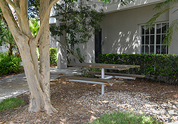 Picnic area directly behind condo rental in the Gulf & Bay Club Bayside.
